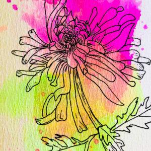 botanisch_tekenen